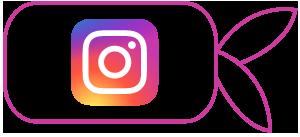 sugo pizzeria ristorante instagram